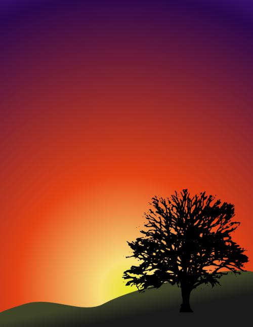 blacktreesunset