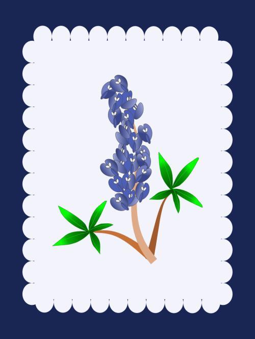 bluebonnetmat